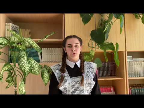 Изображение предпросмотра прочтения – АлександраЕлесина читает произведение «Мне приснилось...» Д.Роголь