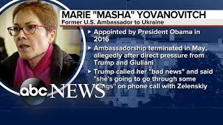Marie Yovanovitch to testify on Capitol Hill   ABC News