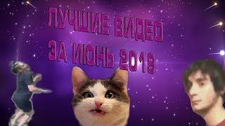 YEAHБАТЬЛучшее за июнь 2019 Попробуй не засмеяться Челлендж Смешные видео