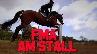 [FMA] Stall I Falto in der Pferdeklinik? I Hufrehe nach Vergiftung I Springen mit Polly
