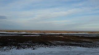 Экскурсия на озеро Койбагар - международно значимое водное угодье (октябрь 2015)
