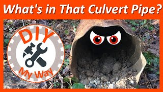 What's in That Old Culvert Pipe? Cleaning Out the Old Culvert Pipe (#13)
