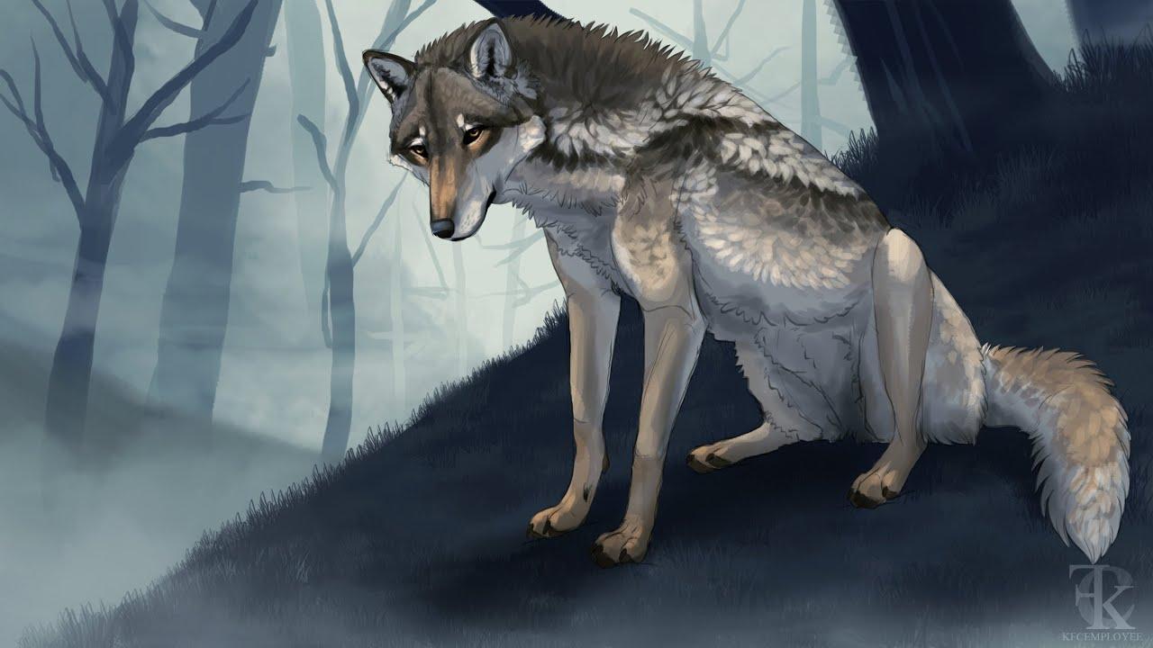 Forlorn Wolf Speedpaint Youtube