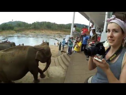 Sri Lanka 2016 | 2 weeks backpacking trip | Xiaomi Yi Full HD (not GoPro)