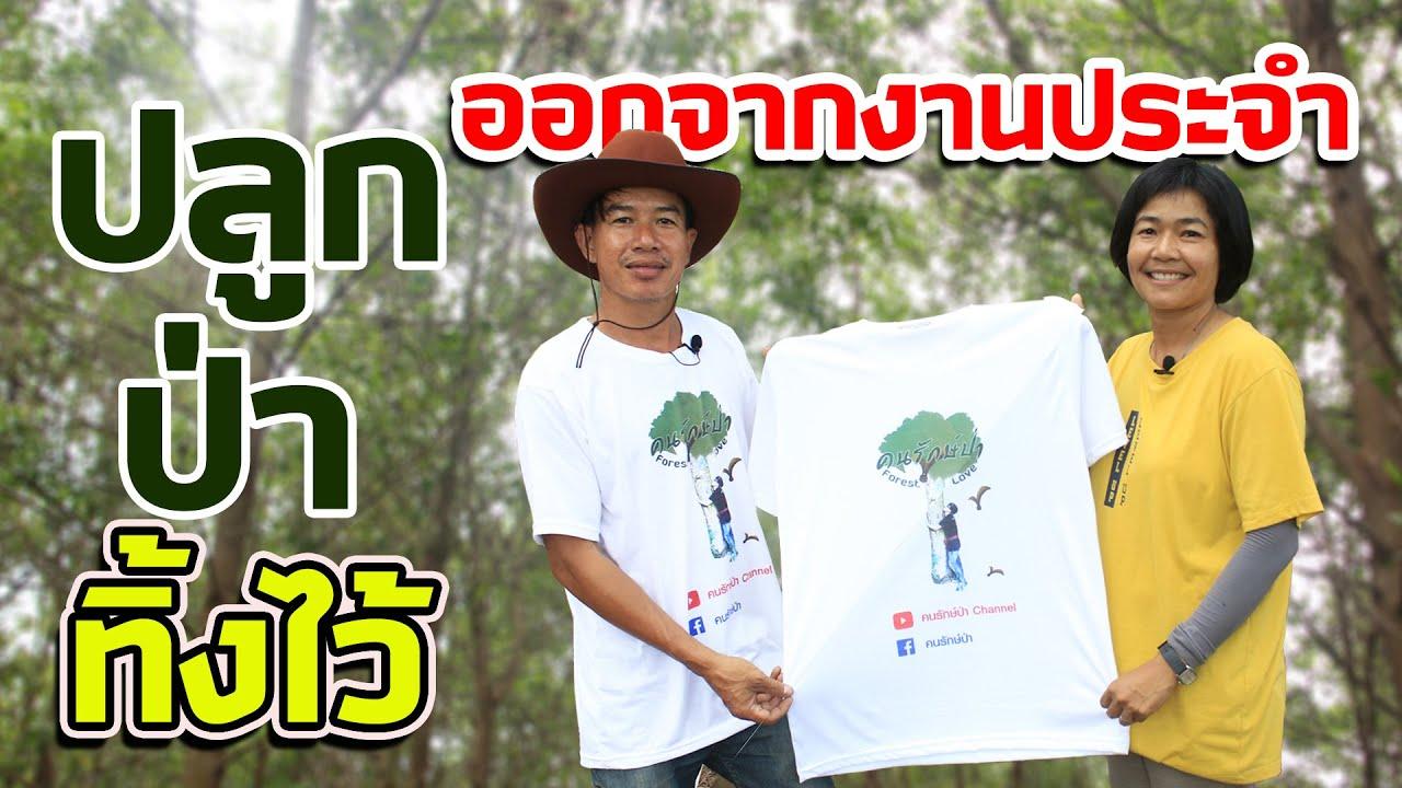 กระถินเทพา ใบเป็นประโยชน์ ต้นยังอยู่ | คนรักษ์ป่า ep 104