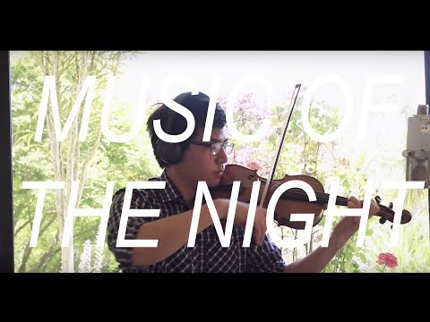 Music of the Night (Violin Cover)