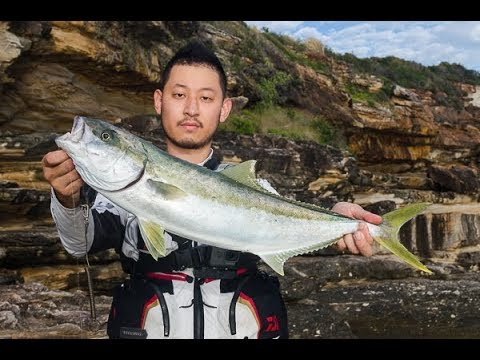 IFLTV: Kingfish On ISO Fishing Sydney