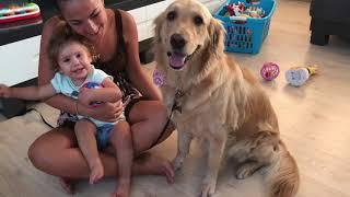 Sevimli Köpek Jüliet Evimize Geldi İkiz bebekler Melis Duru Şasırdı ve Korktular - Köpek ve Bebek