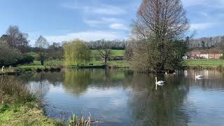 Lakes on the Birtley Estate