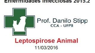 Infecciosas 2015.2 Aula #6 - Leptospirose Animal