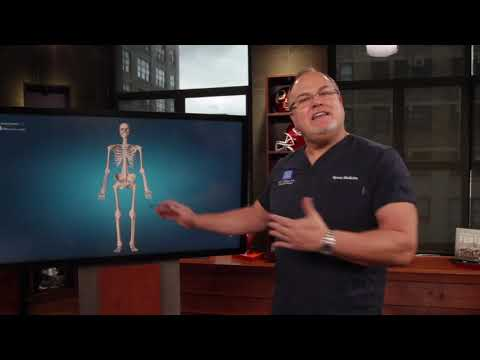 Dr. Mark Adickes: What is the difference between hip, shoulder, and knee arthroscopy?