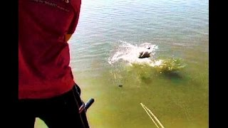 Letsibogo Dam Bass Fishing with The Angling Network
