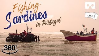 Fishing by the Atlantic Ocean: Portuguese fishermen fishing sardines | Portugal Vlog Ep 06