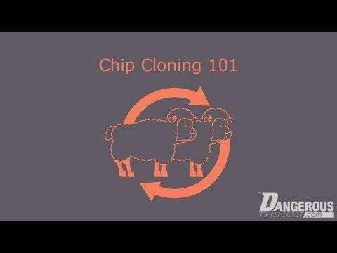 Chip Cloning 101