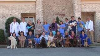 Pelham Alabama Animal Hospital - North Shelby County Animal Hospital
