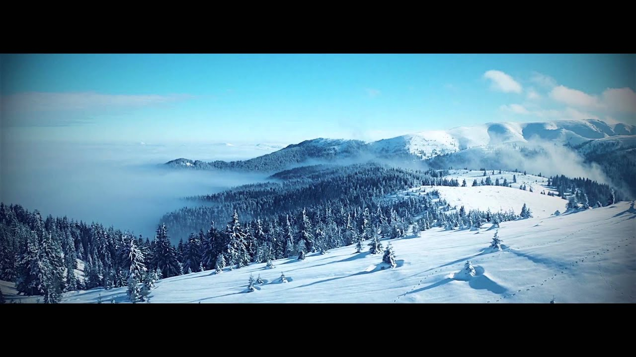 ProGrade: Winter - Professional Cool Color Grades for FCPX from ...