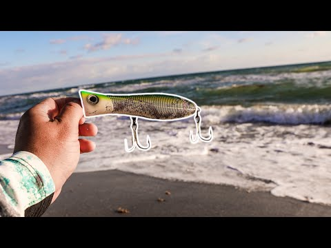 Beach Fishing With A Big Popper
