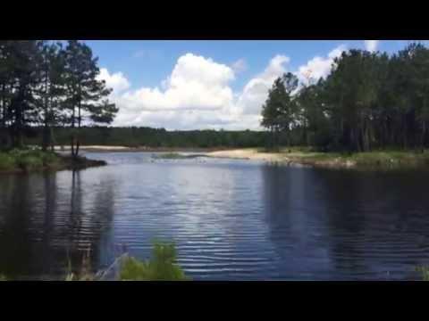 Lake at Magnolia Branch Wildlife Reserve