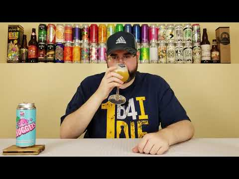 Tropic Nuggets | 450 North Brewing Company | Beer Review | #55