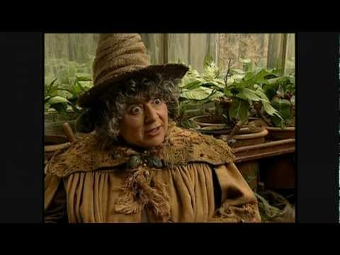 Harry Potter and the Chamber of Secrets - Miriam Margolyes short interview streaming vf