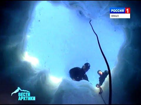 Подводный глайдер - умная разработка для изучения и сохранности водных глубин