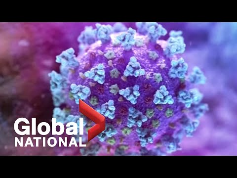 Global National: Jan. 26, 2021 | Number of new COVID-19 variant cases in Canada grows