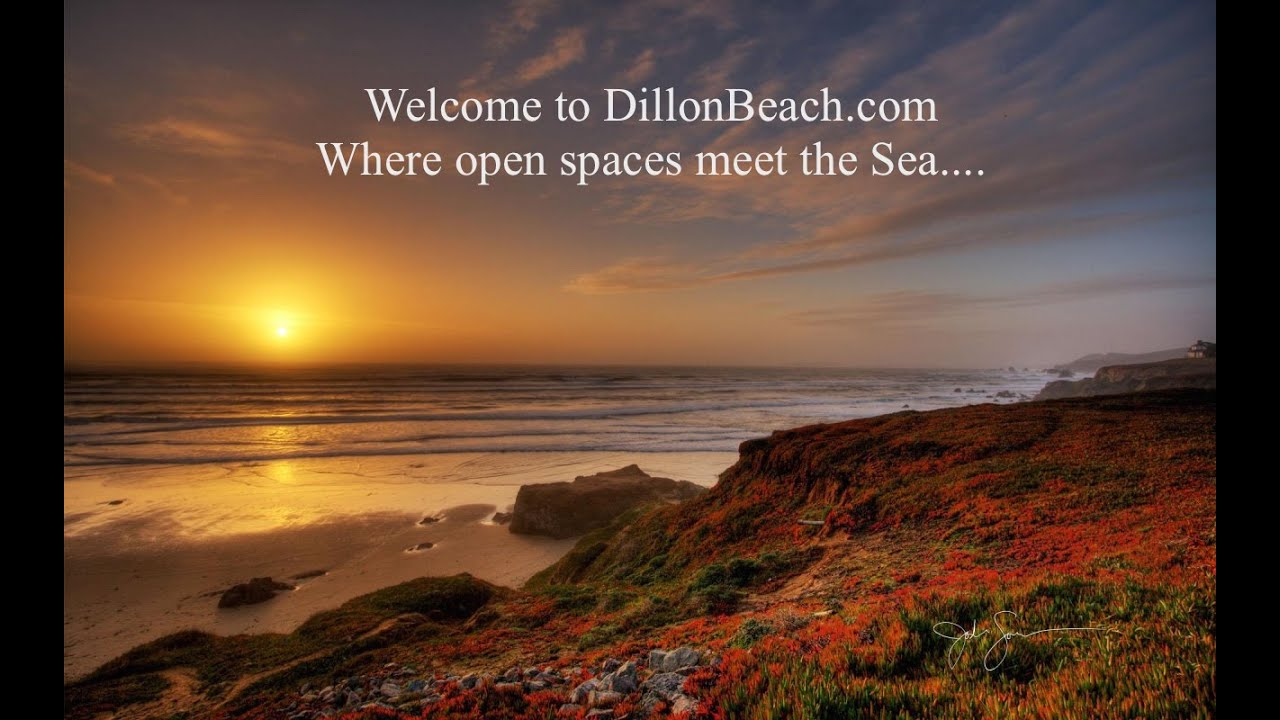 dillon beach Find dillon beach in dillon beach with address, phone number from yahoo us local includes dillon beach reviews, maps & directions to dillon beach in dillon beach and more from yahoo us local.