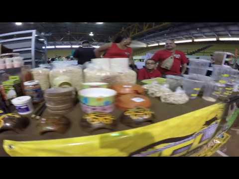 Puerto Rico Reptile & Trade Show 2016