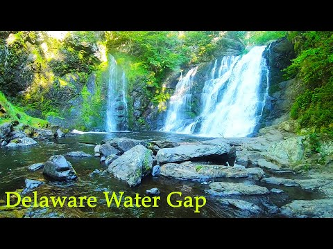 DELAWARE WATER GAP - Fishing (5 Species Caught)