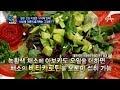 '건강아 오거라~' 신신애 가족이 즐겨먹는 '이것' 혈관 건강의 열쇠?!