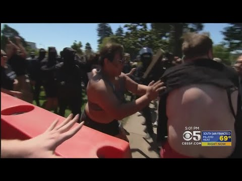 Defense Of Antifa Protesters Persists Despite Evidence Of Unprovoked Violence