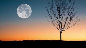 GAR - Moon