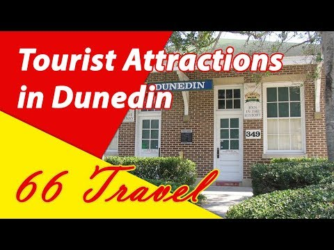 List 8 Tourist Attractions in Dunedin, Florida | Travel to United States