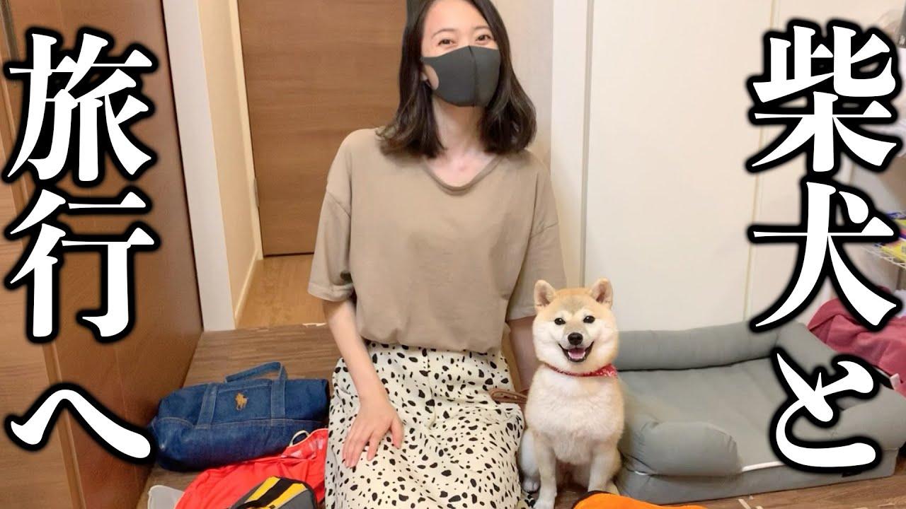 The First Trip With My Shiba Inu!!