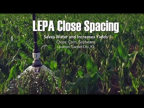 Growers are Saving Water and Energy with LEPA Close Spacing in Kansas ― Interview