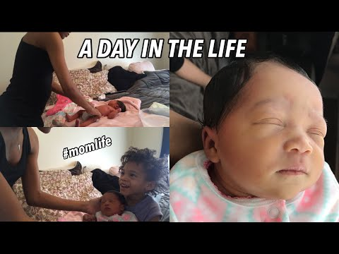 A Day in The Life with a Newborn and Toddler