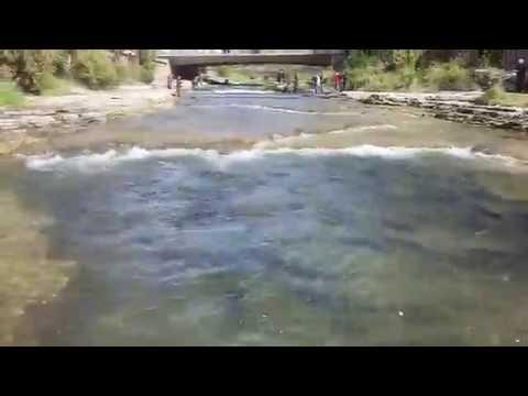 Port Hope ON, Ganaraska River, Salmon And Steelhead Fishing