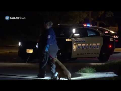 Scene of woman attacked by pack of pit bulls in South Dallas