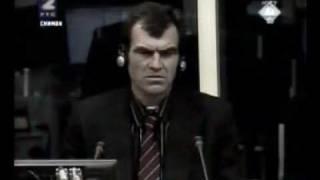 Vojislav Šešelj i ekspert Gušalić 1/11