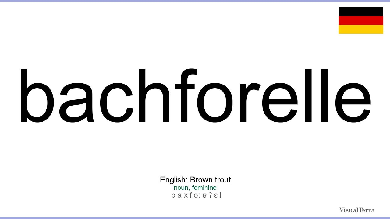 how to pronounce bach in german
