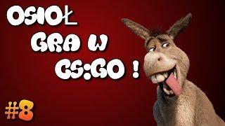 OSIOŁ GRA W CS:GO! - TROLL #8