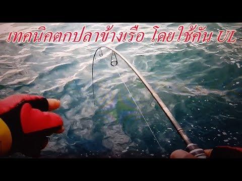 เทคนิคตกปลาข้างเรือ โดยใช้คัน UL
