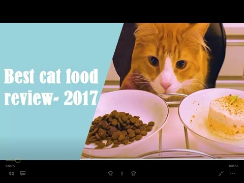 Best 7 cat food review-2017/ best healthy dry food for cat/Best pet food