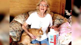 Centinela Feed & Torrance YMCA partner to help seniors and their pets.