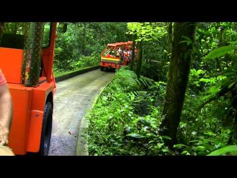 Puerto Rico Cuevas de Camuy - Camuy River Cave Park
