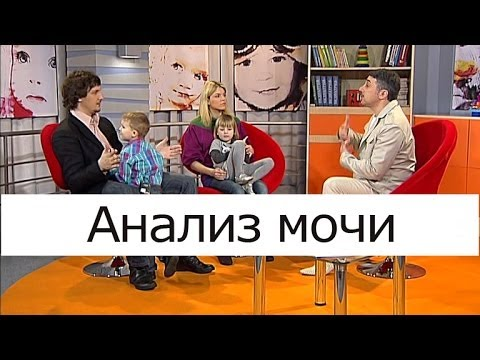 Анализ мочи по Нечипоренко: правила сбора
