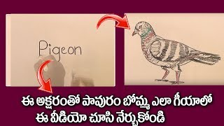How To Draw a Pigeon From The Word Pigeon 2018 | Pigeon Easy Drawing | Kids Learning | ART WORK