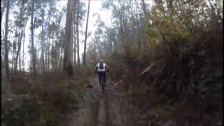 BTT - Bikes Trilhos e Tascos - Nos