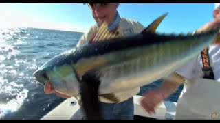 Deep Sea Fishing Venice la sportsman - Tuna Fishing