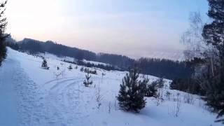 Siberia/Krasnoyarsk/wild deer